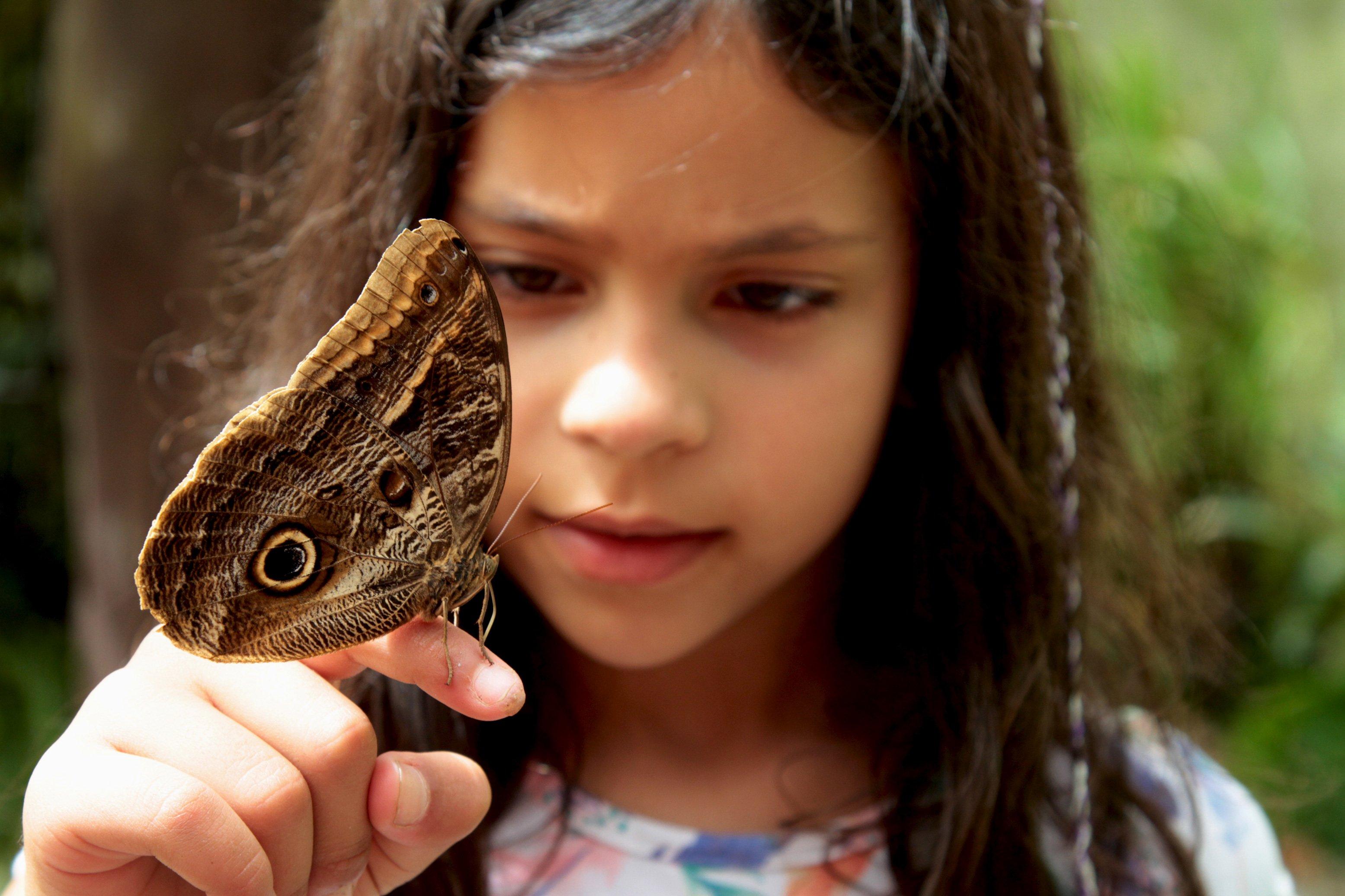 menina com borboleta na mão no acampamento de férias